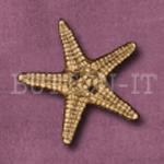 222 Starfish 30mm x 30mm