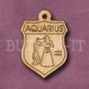 Aquarius Jan 21st - Feb 19th